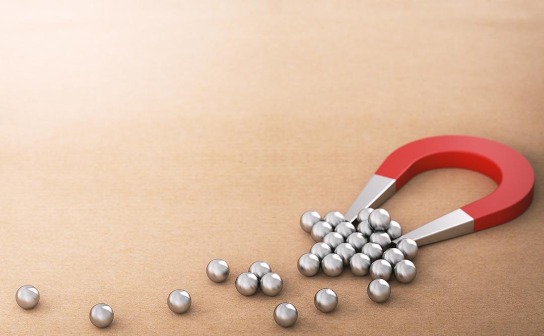 Workshop lead magnet